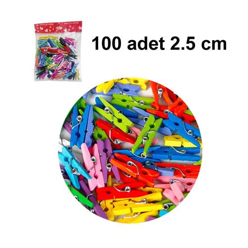 Renkli Ahşap Mandal 2,5 cm (100 adet)
